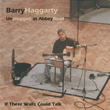 Barry Haggarty - If These Walls Could Talk
